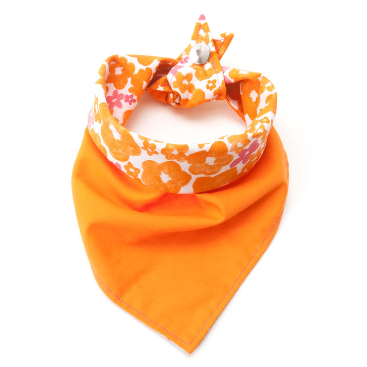 Calypso reversible dog bandana showing orange side