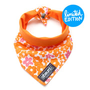 floral orange and pink reversible dog bandana