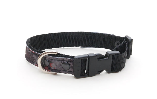 Tundra upcycled neoprene collar with side release buckle