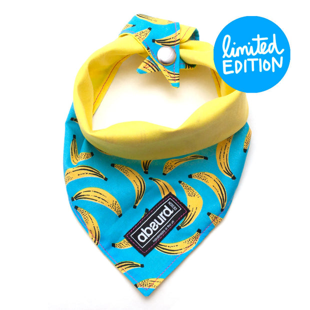 Fun Dog Bandana: Cheeky Monkey