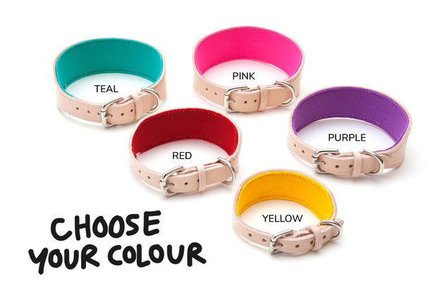 Choice of felt lining colours for Absurd Design hound collars