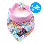 quirky skull pattern on pretty reversible dog bandana