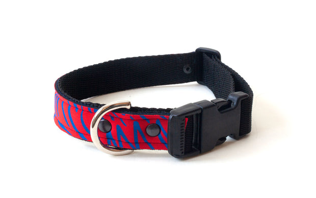 Neoprene Dog Collar: Majestic