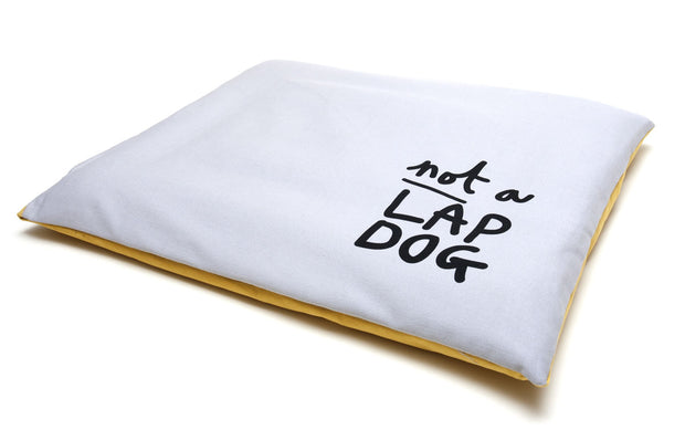 modern stone denim reversible dog cushion showing quirky saying