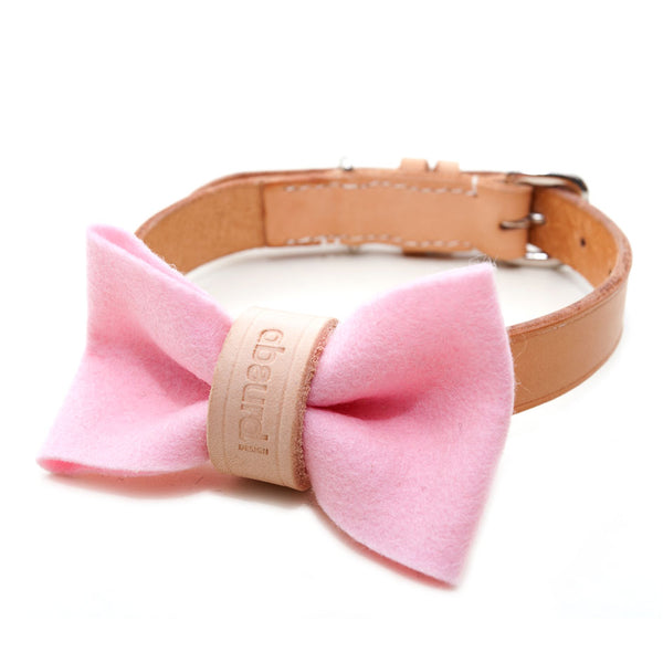 Give the dog a bow : PINK