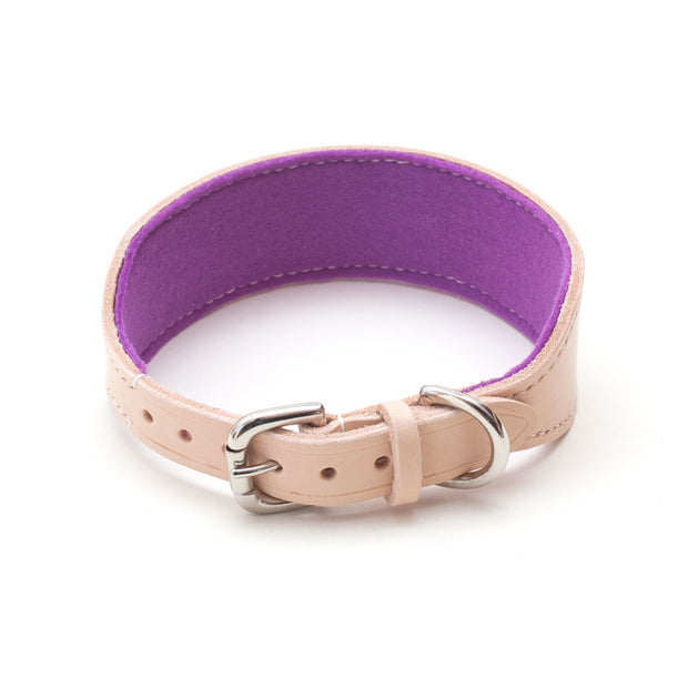 leather sighthound collar with buckle and purple felt lining