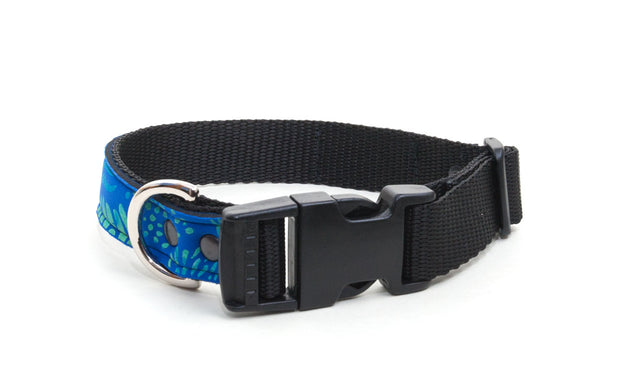 Neoprene dog collar : Reef