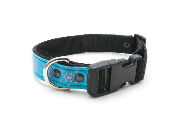 cool upcycled wetsuit dog collar, comfortable, with buckle