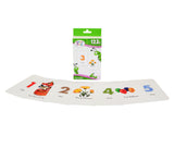 Brainy Baby 123s Flashcard Set Introducing Numbers 1 to 20 Flash Cards