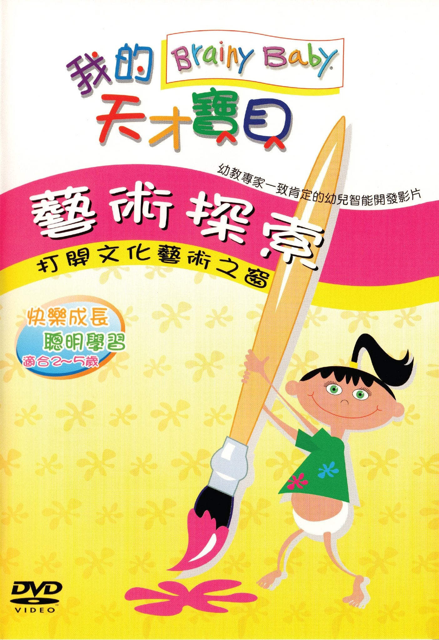 Brainy Baby Chinese Language Art DVD