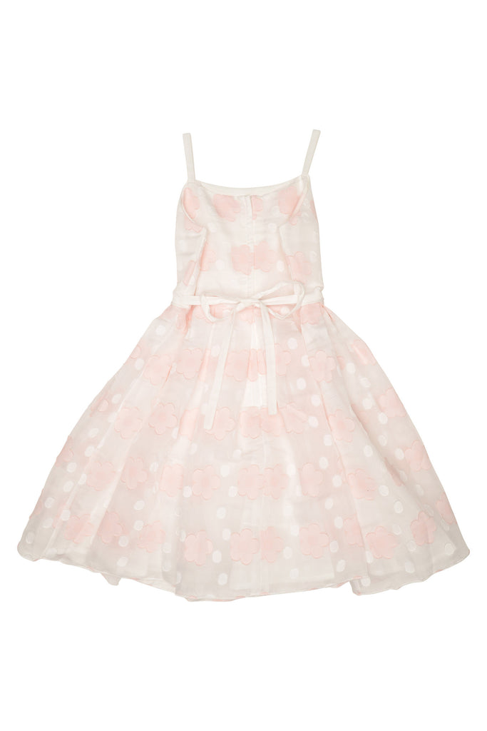Biscotti Sheer Bliss Dress - Pink/Ivory