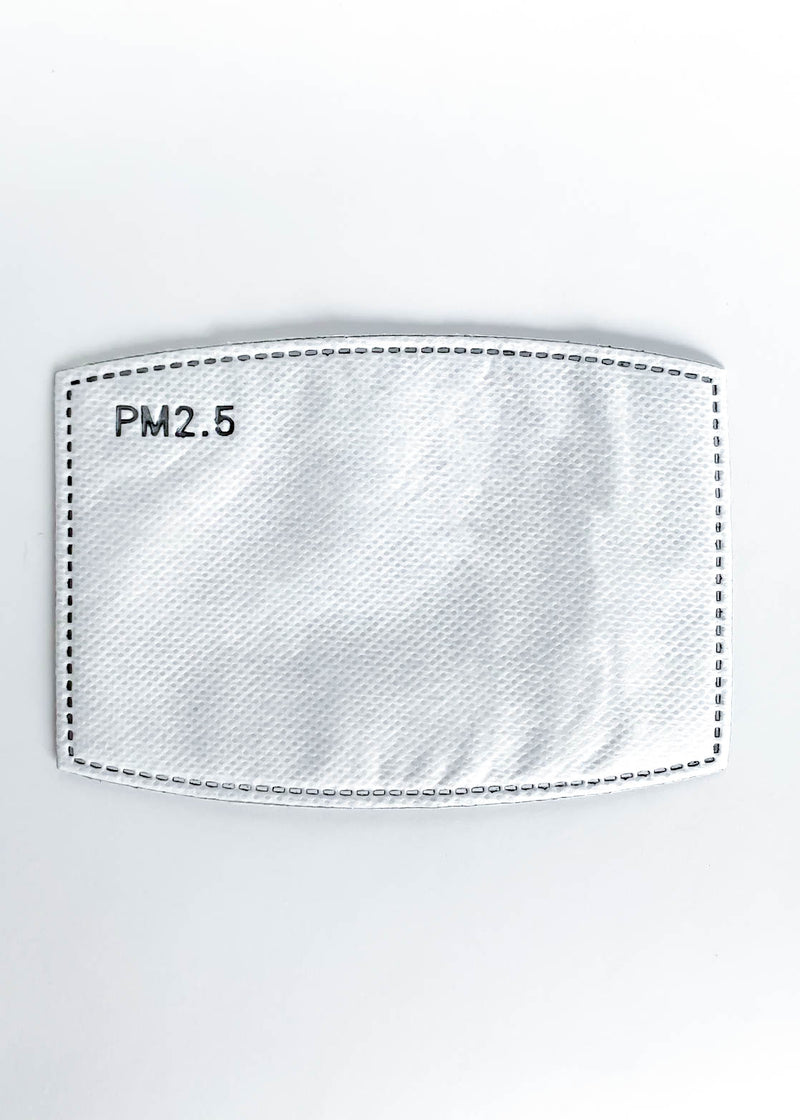 PM 2.5 Activated Carbon Filter