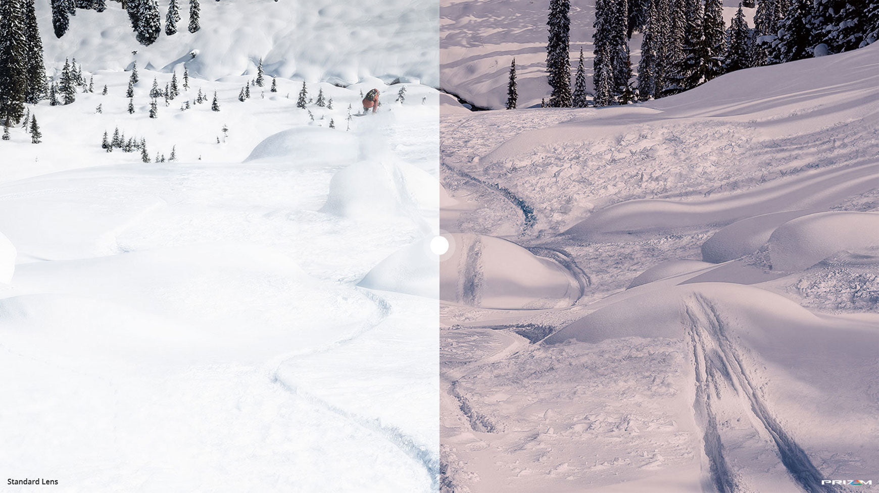 YOU WILL NEVER SEE SNOW THE SAME WAY AGAIN