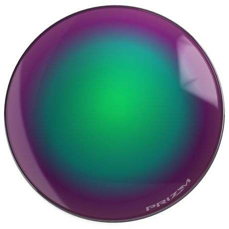 Prizm™ Shallow Water Puck Image