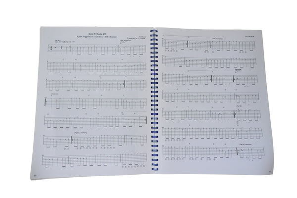 The Primary Color Owner's Manual- Complete Tablature for the entire CD!!