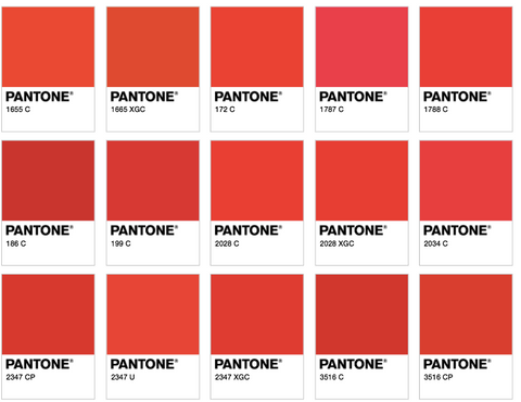 Red Pantone Small Business Branding