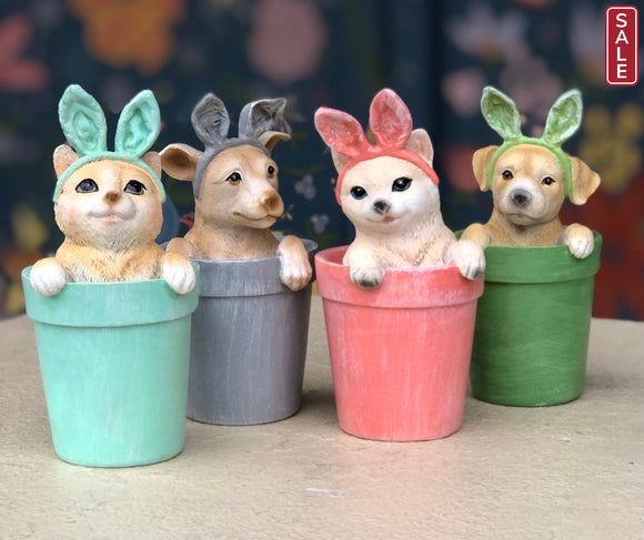 Pet in a Pot with Bunny Ears-Gift-dog in green pot-Quinn's Mercantile