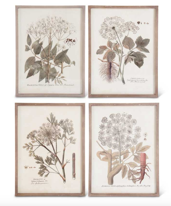 Wood Framed Botanical Print-For the Home-Quinn's Mercantile