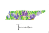 Floral Tennessee Tea Towel-kitchen-Quinn's Mercantile
