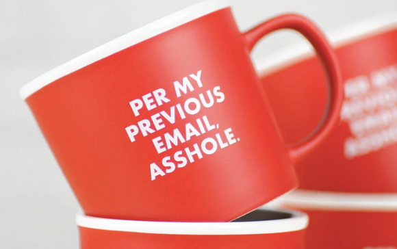 Per my Previous Email Asshole Ceramic Mug-Gift-Quinn's Mercantile