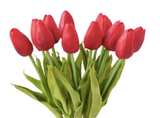 Mini Tulip Stems-Floral Spring-Red-Quinn's Mercantile