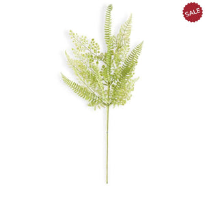 Mixed Fern Stem-Floral Spring-Quinn's Mercantile