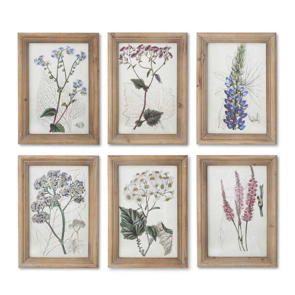 Botanical Prints in Natural Wood Frames-Wall Decor-Quinn's Mercantile