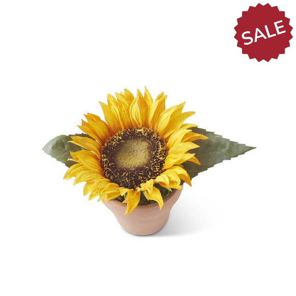 Potted Sunflower-Floral-Quinn's Mercantile