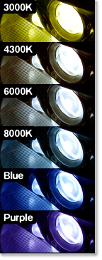 XenonSupply HID Color Guide