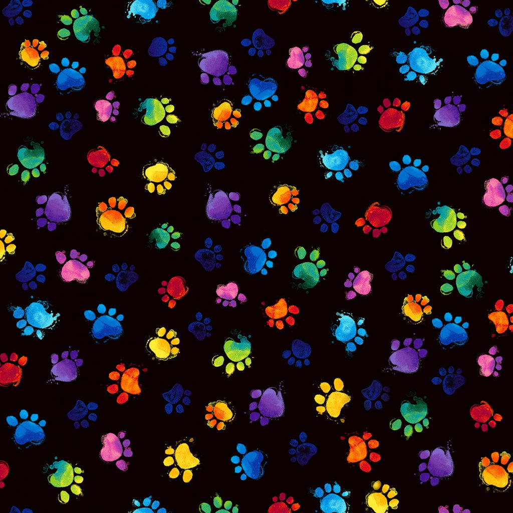 Rainbow Cat Paws on Black
