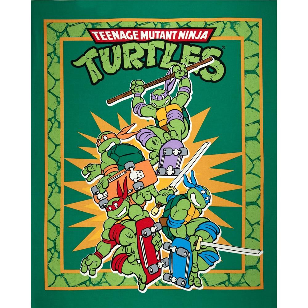Teenage Mutant Nija Turtles Panel