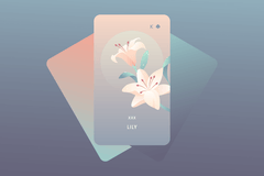 The Lily Lenormand Card Meaning and Combinations