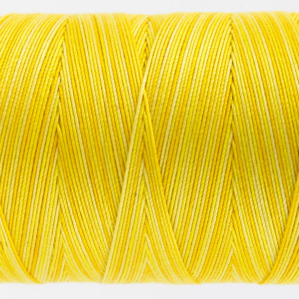 FT01 - Fruitti 12wt Egyptian Cotton Sunny Thread - wonderfil-online-uk