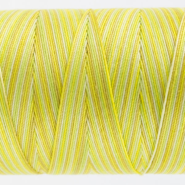FT03 - Fruitti 12wt Egyptian Cotton Citrus Thread - wonderfil-online-uk