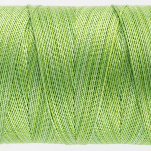 FT29 - Fruitti 12wt Egyptian Cotton Grass Thread - wonderfil-online-uk
