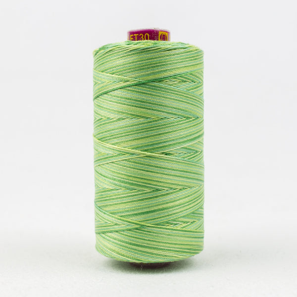 FT30 - Fruitti 12wt Egyptian Cotton Leave Threads - wonderfil-online-uk