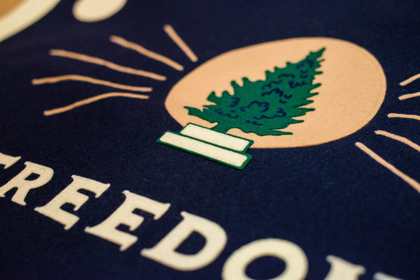 Detail shot of Freedom Flag