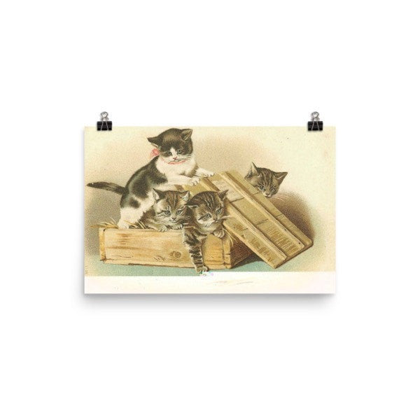 Cat box Poster - Hutsylife - 7