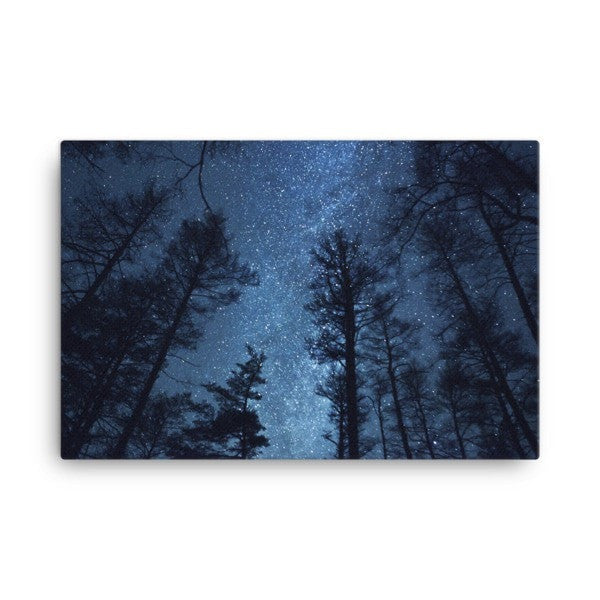 Night forest Canvas - Hutsylife - 4
