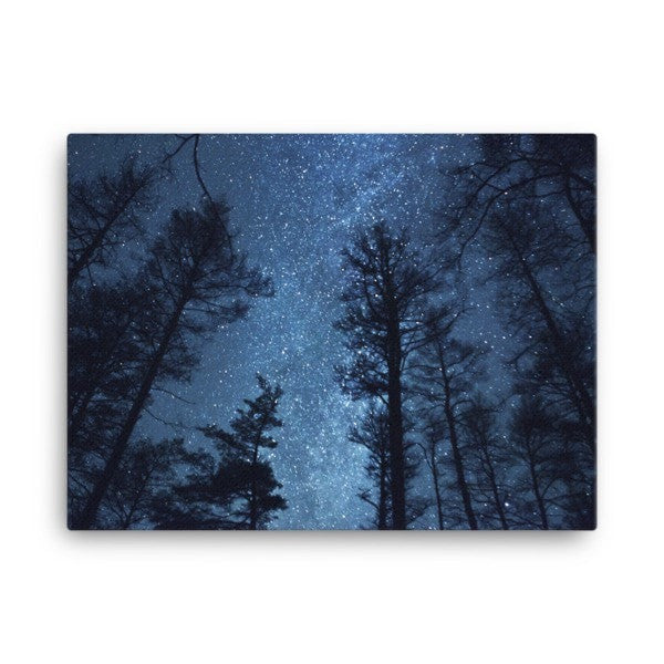 Night forest Canvas - Hutsylife - 3
