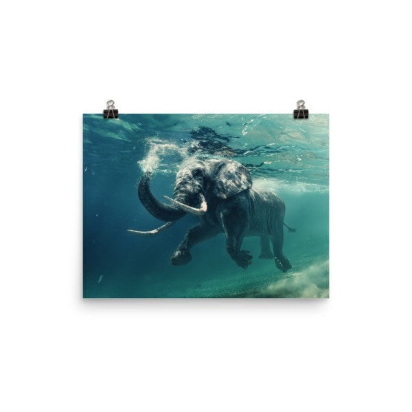 Swimming elephant color Poster - Hutsylife - 5