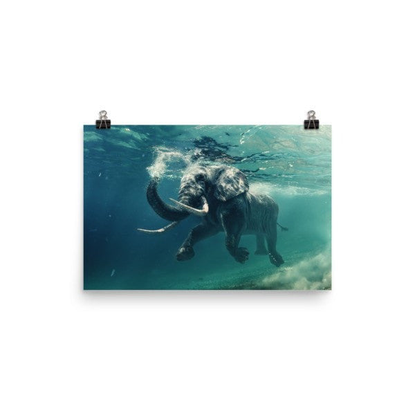 Swimming elephant color Poster - Hutsylife - 7
