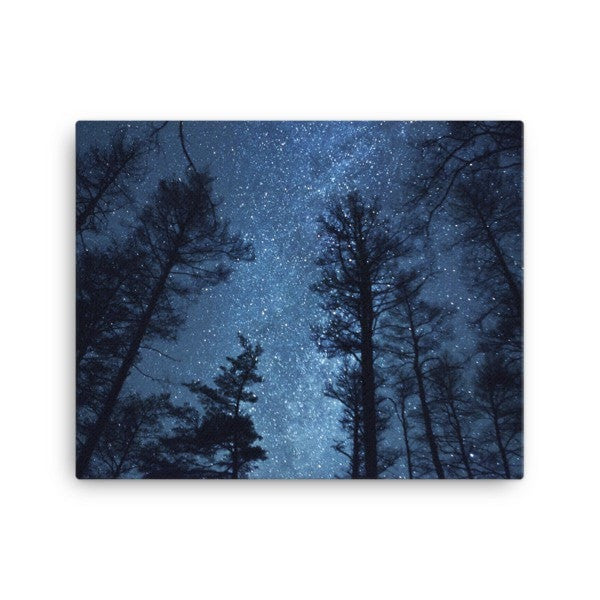 Night forest Canvas - Hutsylife - 2