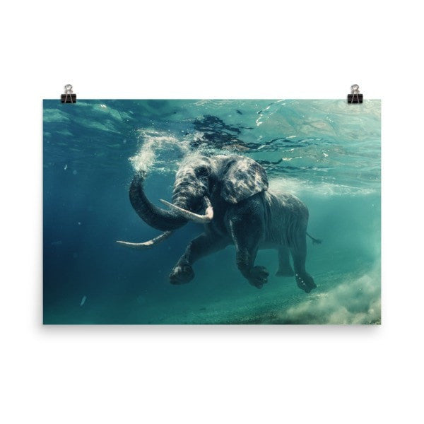 Swimming elephant color Poster - Hutsylife - 9