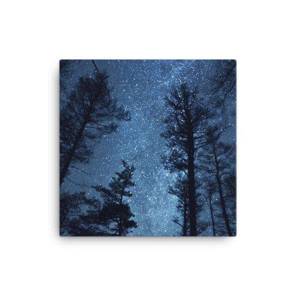 Night forest Canvas - Hutsylife - 1