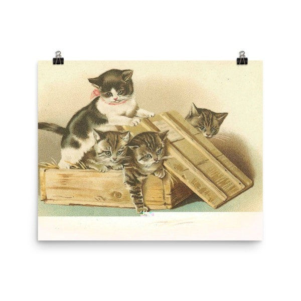 Cat box Poster - Hutsylife - 8