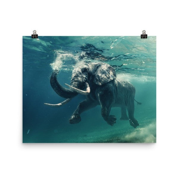 Swimming elephant color Poster - Hutsylife - 8