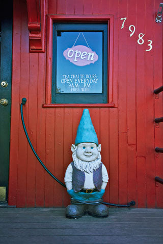 Tea Chai Té Sellwood Gnome