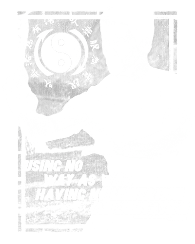 Bruce Lee No Way As A Way Men's V-Neck T-Shirt