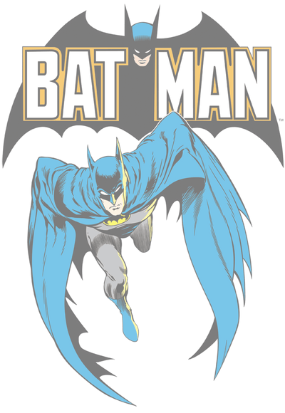 Batman Batman #241 Cover Juniors T-Shirt